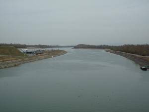 Der Rhein bei Fessenheim